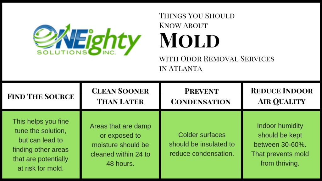 4 Things You Should Know About Mold with Odor Removal Services in Atlanta - ONEighty