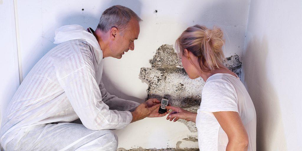 Mold-Removal-Marietta-Company-Professional-Mold-Help